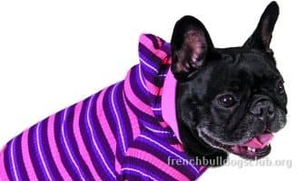 pajamas french bulldogs